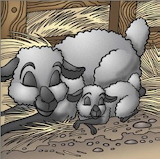 Maman mouton dort aussi