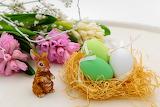 Hares Easter Nest Eggs 557183 1280x853