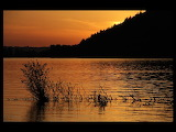 Jason Savage Photography Autumn Lake