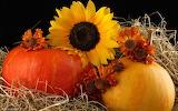 Fall-Harvest-Wallpaper