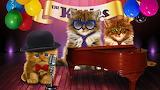 ☺♥ The Kitties Band...☺