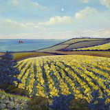 Daffodils at The Lizard by Gilly Johns