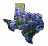 Texas State Shape with bluebonnet flowers