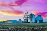 Farm buildings with large tree plowed field