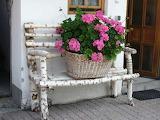 Bench, door, window, basket, flowers