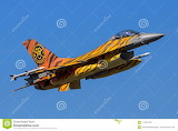 Tiger-military-f-fighter-aircraft-gilze-rijen-netherlands-sep-pa