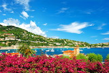 City-ocean-sea-france-pier-shore-dock-flowers-landscape