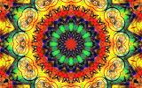 #Animal Kaleidoscope