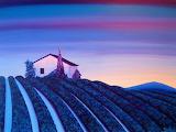 Lavender in blue and violet - Brigitte Dehue