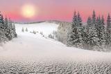 Zima-sneg-sugroby-derevya-6d06