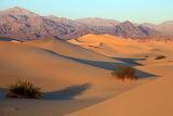 Mesquite flat, Death Valley, Ca