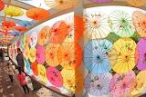 Зонтики в Таиланде