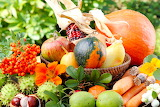 Flowers, apples, corn, pumpkin, basket, vegetables, pear, carrot