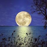 Lunar in full phase