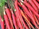 #Purple Carrots