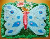 Cake @ Torte A Tema