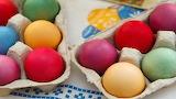eggs-in-carton