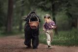 Dog carrying basket