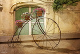 decorative bike