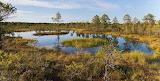 1280px-Viru Bog, Parque Nacional Lahemaa, Estonia, 2012-08-12, D