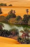 Libyan, Sahara