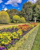 Flowers - Waddesdon Manor - Buckinghamshire