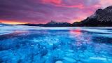 Methane Bubbles, Abraham Lake