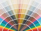 Color Families Card