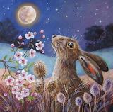 Moon Rabbit Folklore