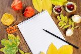 Autumn Berry Chestnut Physalis Notepad Pencils