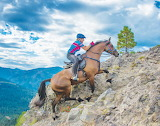 Going the Distance - Endurance Riding