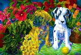 ☺♥ Puppies...
