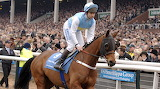 Hardy Eustace and Conor O'Dwyer 2006 Champion Hurdle