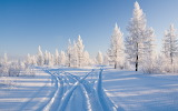 106627-arktika-nebo-illustracia-sneg-utro-2560x1600
