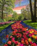 Floral landscaping