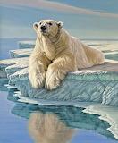 painting polar bear on an ice floe