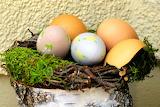 Easter 207