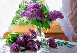 Flowers, bouquet, window, lilac, curtains, sunshine