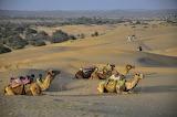 Balade dans le désert