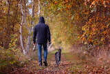 Autumn-walk-nature
