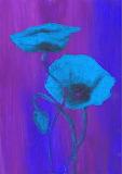 Blume Mohn blau
