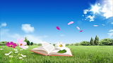 Libro en la hierba