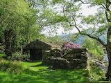Near Beddgelert, Wales