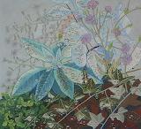"Plants tumblr dogstardreamer ""Leigh Ruple"""