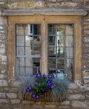Castle Combe window, Cotswolds