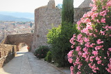 Castle of Cardona - Spain