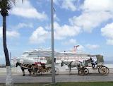 Horses Cuzumel at the cruise ship dock.