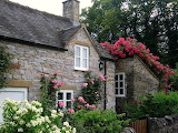 Cottage with Roses in the Village of Thorpe on the Tissington Tr