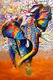 elephant-colours