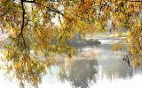 Осень 18